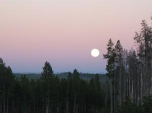 7 full moon